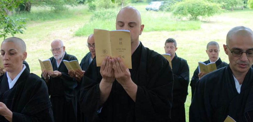 Een duwtje van 1000 jaar Boeddhistische beoefening in de rug!